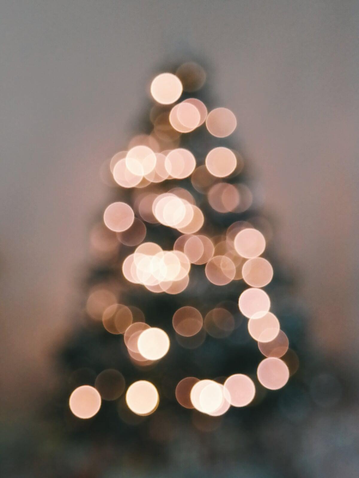 Weihnachtsbaum Nadeln.Damit Ihr Weihnachtsbaum Möglichst Lange Nicht Zu Nadeln Beginnt